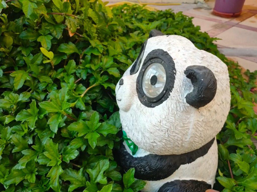 Панда на Realme 6 Pro